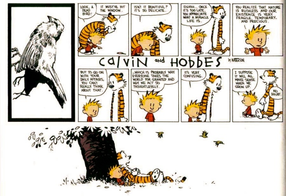 written and illustrated by Bill Watterson